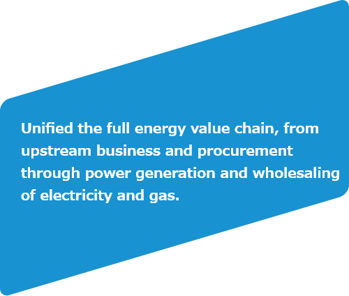 Unified the full energy value chain, from upstream business and procurement through power generation and wholesaling of electricity and gas.